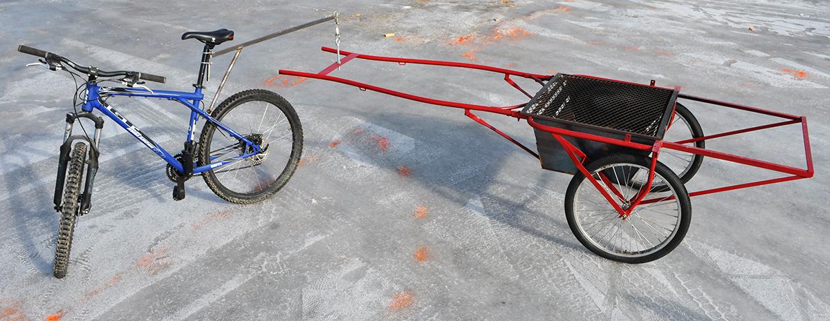 bike trailer red balance